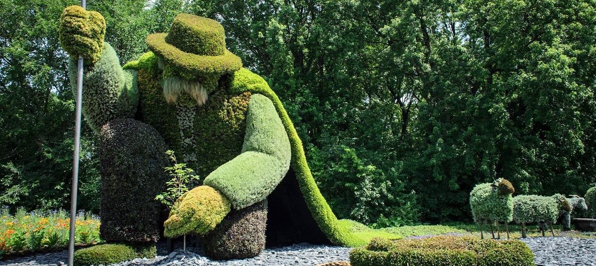 homme-plante-arbre