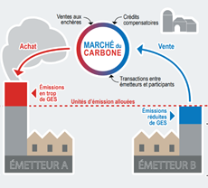 Comprendre le marché du carbone