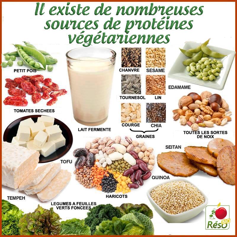 proteines-vegetariennes